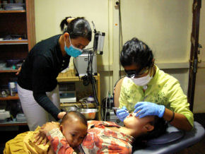 How dentists are saving Borneo's rainforest